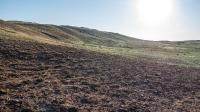 Гора Боевая (Мертвые соли)