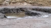 Тузлуккольские грязи