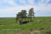 «Парусник» Карагайский бор и ущелье на реке Губерле