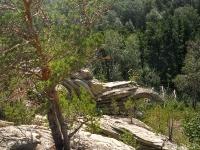 Скала «Черепаха» Карагайский бор и ущелье на реке Губерле. 2015 год.