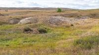 Верхнечинское карстовое поле