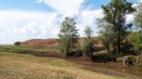Биктимировские (Ташлыкульские горы). Июль 2021 года