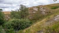 Карстовое поле Печоры (Спасское)