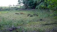Присалмышское карстовое поле (Урочище «Тулкун»)