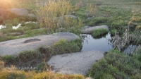 Ручей Бадымбай