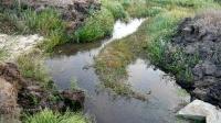 Исток ручья Карагашки