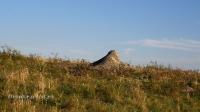 Карабутакский гранитный массив (скалы «Шонкал»)