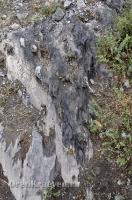 Карстовое поле и мраморный лог у Юбилейного
