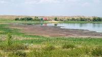 Озеро Купа (Гайнуллинское). Июнь 2021 года