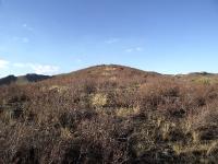 Гора Поперечная у села Губерля