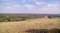 Гора Янгизка