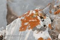 Мраморный утёс