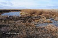 Мраморный плес реки Каменки (озеро Холодное). Ноябрь 2012 года