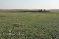 Ащисайская степь (участок госзаповедника «Оренбургский»)