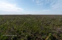 Орь-Кумакская степь