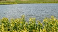 Озеро Кызколь. Июнь 2021 года