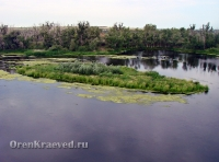 Утес на реке Урал в Скалистом (Скалистый Яр)