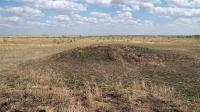 Курганный могильник «Пятимары II»
