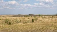 Курганный могильник «Пятимары III»
