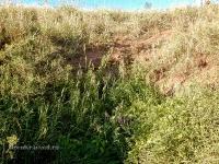 Туембетский рудник