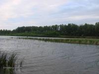 Река Сакмара