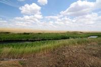 Ручей Верхний Караус