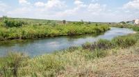 Река Сухая Губерля. Июнь 2021 года