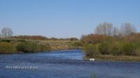 Река Жарлы (Джарлы)