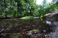 Река Чебакла (Сара, Чебокна)