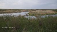Река Солончанка (приток Суундука)
