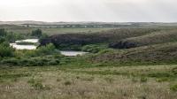 Река Кумак (Большой Кумак). Май 2021 года