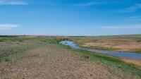 Река Ащебутак (Ащибутак, Тута). Май 2021 года