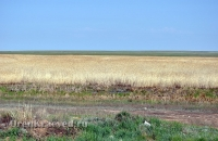 Озеро Журманколь