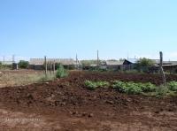 Село Орловка